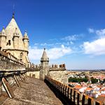 【旅レポート】ポルトガル~アレンテージョ編~Workaway体験