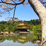 知らないと損!京都旅行にお得なパッケージツアー